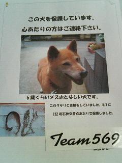 fukuchan_070813_03.jpg